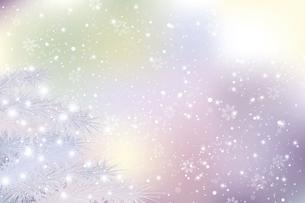 モミと雪のクリスマス背景のイラスト素材 [FYI04925098]