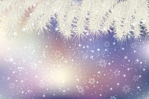 モミと雪のクリスマス背景のイラスト素材 [FYI04925178]
