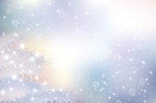 モミと雪のクリスマス背景のイラスト素材 [FYI04925179]