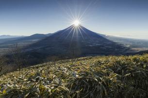 竜ヶ岳から朝のダイヤモンド富士の写真素材 [FYI04925206]