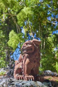 竹富島のシーサーの写真素材 [FYI04925636]