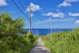 石垣島の海へと続く一本道の写真素材 [FYI04925655]