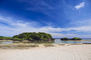 西表島の星砂の浜の写真素材 [FYI04925661]