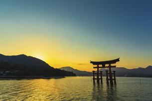 厳島神社の大鳥居(秋の夕暮)の写真素材 [FYI04925982]