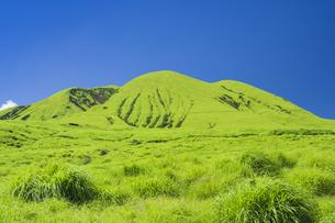 阿蘇 阿蘇の草原と往生岳の写真素材 [FYI04926370]
