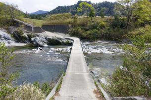 櫛田川の沈下橋から香肌峡(三重県松阪市)の写真素材 [FYI04926491]