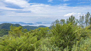 【香川県 坂出市】五色台から見る瀬戸内海の風景の写真素材 [FYI04926495]