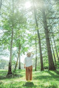 麦わら帽子をかぶった女性と森の写真素材 [FYI04926567]