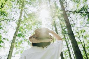 麦わら帽子をかぶった女性と森の写真素材 [FYI04926569]
