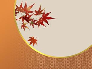 和風模様を配し、文字スペースを意識した色づいた紅葉のイラスト素材 [FYI04926758]
