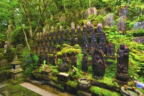 夏の三滝寺(広島県広島市)の写真素材 [FYI04927115]