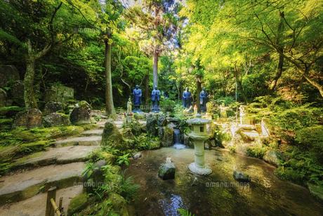 夏の三滝寺(広島県広島市)の写真素材 [FYI04927119]