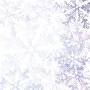 雪の結晶の背景のイラスト素材 [FYI04927918]