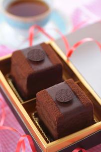 チョコレートケーキの写真素材 [FYI04927976]