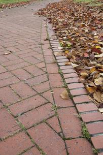秋の落葉とレンガの道の写真素材 [FYI04928129]