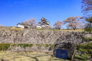 福島県 白河皆既日食の碑の写真素材 [FYI04928409]