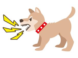 吠える犬のイラストレーションのイラスト素材 [FYI04928887]