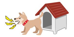 犬小屋の前で吠える犬のイラストレーションのイラスト素材 [FYI04928889]