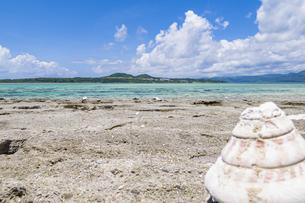 嘉弥真島から臨む小浜島の写真素材 [FYI04928896]