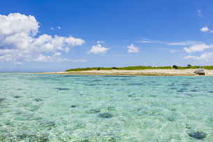 美しいエメラルドグリーンの海と嘉弥真島の写真素材 [FYI04928905]