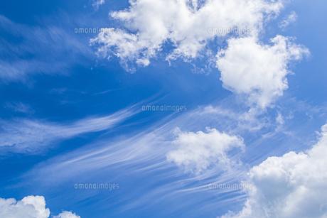 嘉弥真島から見上げる夏の青空の写真素材 [FYI04928910]