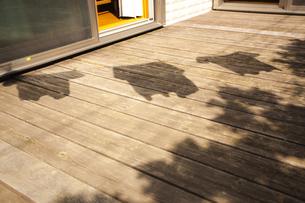 洗濯物の影の写真素材 [FYI04929179]