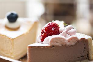 ケーキの写真素材 [FYI04929208]