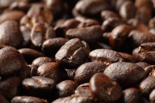 コーヒー豆の写真素材 [FYI04929346]