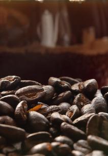 コーヒー豆の写真素材 [FYI04929375]