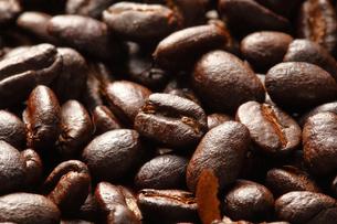 コーヒー豆の写真素材 [FYI04929378]