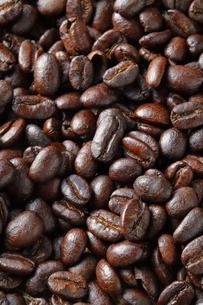 コーヒー豆の写真素材 [FYI04929379]