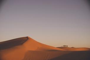 モロッコ メルズーガ サハラ砂漠砂丘の絶景の写真素材 [FYI04929521]
