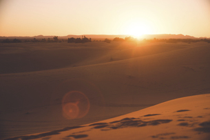 モロッコ メルズーガ サハラ砂漠砂丘のオアシスに沈む夕陽の写真素材 [FYI04929522]