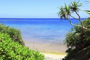 沖縄・池間島 カギンミビーチと海の写真素材 [FYI04929586]
