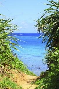 沖縄・池間島 カギンミビーチと海の写真素材 [FYI04929590]