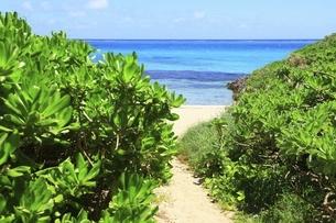 沖縄・池間島 フナクスビーチと海の写真素材 [FYI04929591]
