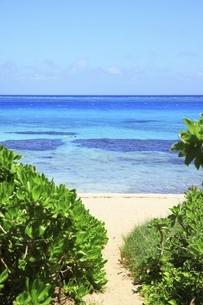 沖縄・池間島 フナクスビーチと海の写真素材 [FYI04929594]