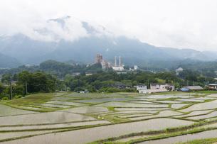 寺坂棚田と武甲山の写真素材 [FYI04929678]