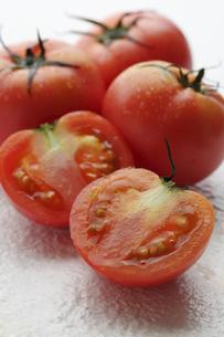 トマトの写真素材 [FYI04929863]
