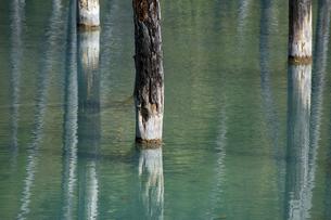 さざ波が立つ秋の青い池の写真素材 [FYI04930120]