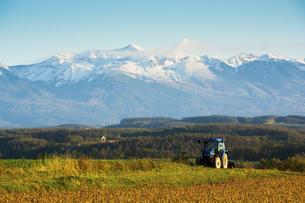 秋の冠雪した十勝岳の写真素材 [FYI04930124]