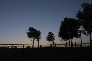 夕暮れの公園の写真素材 [FYI04930128]