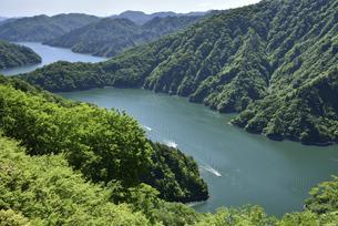 新緑の田子倉湖の写真素材 [FYI04930143]