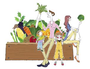 家庭菜園で野菜を収穫する家族のイラストのイラスト素材 [FYI04930155]
