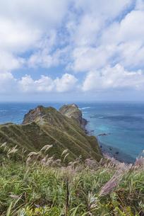 積丹半島・神威岬の写真素材 [FYI04930216]