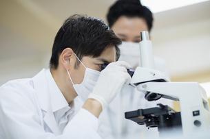顕微鏡を覗く男性研究員の写真素材 [FYI04930399]
