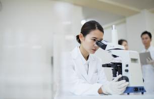 顕微鏡を覗く女性研究員の写真素材 [FYI04930405]
