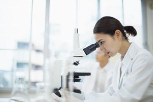 顕微鏡を覗く女性研究員の写真素材 [FYI04930407]