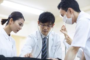 救急患者の診察を行う医師と看護師の写真素材 [FYI04930495]