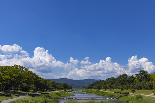 北大路橋からの賀茂川の写真素材 [FYI04931843]